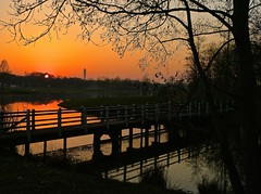 Sunset . (Fijgje On/Off) Tags: bridge sunset water reflections zonsondergang brug spiegelingen aldertree fijgje mygearandme mygearandmepremium mygearandmebronze mygearandmesilver mygearandmegold elzenboom panasonicdmctz30 mrt2014 infinitexposure