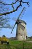Bidston Windmill (6) (Andrew_D_Hurley) Tags: trees england tree bluesky birkenhead blueskies footpath wirral merseyside bidston bidstonhill bidstonwindmill wirralwalk wirrallandmark wirralfootpath bidstonwalk