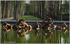 Apollo fountain at Chateau de Versailles (alcowp) Tags: park trees horses sculpture france water fountain architecture garden versailles chateau parc fra