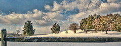 SNOWED IN (Irene2727) Tags: trees winter panorama snow nature clouds fence landscape pano annapolis