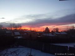 February 3, 2015 - A gorgeous Thornton sunrise. (Andrea Lucero)