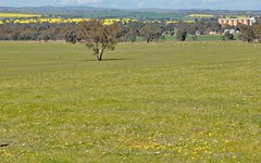 Lot 161 Murrulebale Road, Old Junee NSW