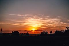 drop (ewitsoe) Tags: trees sunset sun hot field forest 35mm gold warm warmth poland sunny heat summery nikond80 easternpoland ewitsoe summervsco wlodaw