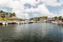 B36C4799 (WolfeMcKeel) Tags: trip vacation marina keys spring key florida yacht largo 2016 lansdcape floridakeys2016vacationspring