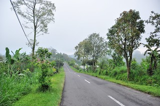 bali nord - indonesie 66
