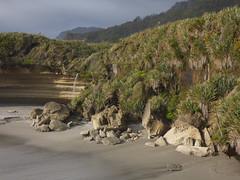 Trumans Bay (Steve Taylor (Photography)) Tags: newzealand plants beach nature rock stone landscape bay coast waterfall sand rocks erosion trail nz strata limestone southisland weathered coastline layers tasman westcoast flax trumans