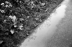 Reflections in a Mud Puddle- Apologies to Dory Previn. (Man with Red Eyes) Tags: reflection monochrome analog zeiss puddle blackwhite rangefinder lancashire lp verge leicam2 adox silverhalide sunnysixteen doryprevin td201 silvermax silvermaxadox a3minsb3mins continuousagitation distagont1435zm reflectionsinamudpuddle
