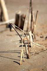 Apulien (andreasdietrich477) Tags: italien sea sky italy sun beach strand landscape eos meer wasser mare view outdoor aussicht landschaft sonne apulia peschici apulien 550d weichgezeichnet niedrigerkontrast mittlerequalitt mittlerequalitt