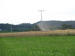 ...bei der Arbeit... (elisabeth.mcghee) Tags: wheat harvest ernte wheatfield getreide mhdrescher