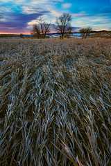 Morning.  It's a new day. (stevepamp) Tags: stevepamp colorado landscape sunrise newday rebirth beginning newbeginning canon eos 5d mk iii 1740 f4l