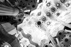 High up (lorenzoviolone) Tags: barcelona trip travel light blackandwhite bw church monochrome blackwhite spain columns journey finepix gaudi fujifilm catalunya sagradafamilia basiclica fav10 agfascala200 mirrorless vsco vscofilm fujix100s x100s fujifilmx100s travel:spain=barcelona2015