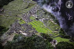 Ciudad monumental de Machu Picchu (2H Photography) Tags: apple cuzco architecture canon landscape iso100 arquitectura mac paisaje per nik machupicchu f28 canoneos5dmarkii canonef2470mmlf28 wwwhectorvilaes 2hphotography adobephotoshopcc www2hfotografiacom adobelightroomcc