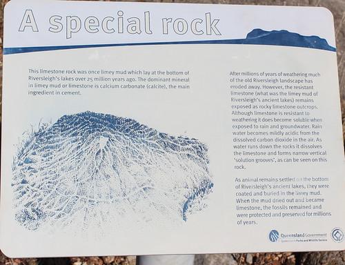 Limestone Rock, Riversleigh