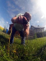 Hop Frog World (gripspix (OFF)) Tags: reflection spiegelung selfie gardenball verzerrt distortet gartenkugel 20160523 foolingwithmycam kameranarrheiten