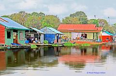 IMG_1359maisons flottantesTonle Sap (philippedaniele) Tags: cambodge village maisonflottante flotteurs radeaux villageflottant lactonlesap