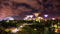 Garden by the Bay Supertree, Singapore (Br@jeshKr) Tags: singapore singaporenight supertree gardenbythebaysupertree