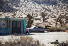 waiting it out (Maureen Bond) Tags: desert car movie occupied classic nowthatsalongcar hot ca maureenbond