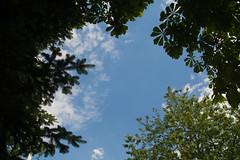 Blick aus der Sonnenliege (thieschi) Tags: sky sun sony himmel 1750 tamron sonne slt a77