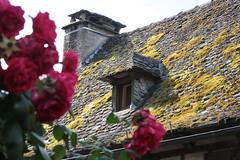 Toit à Conques (Pi-F) Tags: france toit fenêtre chienassis mousse lave pierre cheminée