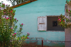 House with a Ch (Ashdon McFall) Tags: world wood blue roof sun house plant flower home window wall 35mm fence poster prime bush nikon war day village image cuba poor carribean sunny revolution hero shutter conflict che powerful flap guevara uprising