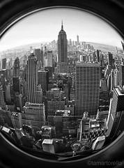 Never A Bad View New York City. (Tracy Martorello) Tags: nyc newyorkcity architecture cityscape topoftherock