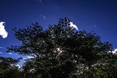 Parque Nacional do Catimbau ou, Vale do Catimbau. (Adolfo Santos Sonteria) Tags: brasil cu vida nuvens caminhos pernambuco imagem cuazul caminhar fotografiadocumental aoarlivre artefotografica valedocatimbau adolfosantos vidaquesegue amorpelavida vidadeandada adolfosantossonteriagettyimages