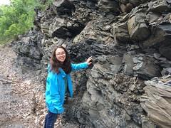 IMG_1528 (ArgyleMJH) Tags: geology taconic paleozoic ordovician cambrian deepkillformation mudstone logancycles logansline thrustfault faults fractures allochthon giddingsbrookslice argyle washingtoncounty newyork ucdavis
