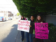 Weekly Chicken Vigils May 2013 (liberationbc) Tags: chickens chicken vancouver vegan demonstration vegetarian activism vigil commercialdrive outreach slaughterhouse hastingsstreet advocacy leafleting liberationbc internationalrespectforchickensday unitedpoultryconcerns