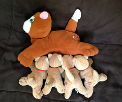 KittenFeeding_time (OrangeSlime.com) Tags: cats animals vintage stuffed plush tonka poundpuppies poundkitty vintageplushdogs