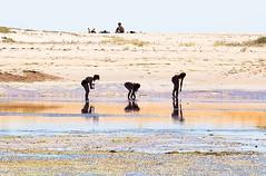 Mariscando en Islacristina (pericoterrades) Tags: islacristina