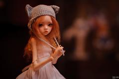 Taiga (dim larina) (izlomdoc) Tags: nikon doll dolls bjd dim chateau taiga d90 larina