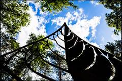 20130815-27 (sulamith.sallmann) Tags: plants plant art silhouette leaf artwork europa kunst pflanze pflanzen blatt bltter lithuania ltu kunstwerk europapark skulpturenpark lietuva litauen schattenriss europosparkas sulamithsallmann