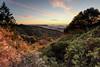 Skyline Blvd. (Tōn) Tags: california trees sunset nature clouds landscape evening unitedstates saratoga paloalto santacruzmountains skylineblvd sanmateo castlerock skylineboulevard tonyvanlecom