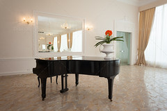 Grand Piano (Dario Lo Presti) Tags: light music white plant black flower reflection window modern mirror design hall big concert keyboard floor bright vibrant interior room lounge performance piano ivory jazz style grand nobody palace clean pot indoors glossy entertainment musical sound classics instrument vase curtains classical expensive majestic society luxury potted sparse wealth clavier elegance