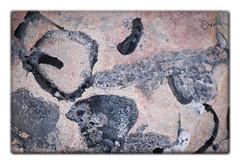 Arte en la Naturaleza (aguilas fotografia) Tags: naturaleza foto arte murcia abstracto cope aguilas aguilasfotografia