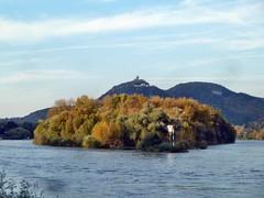 darum ist es am Rhein so schön - on Explore Oct. 23 2013 # 425 (mama knipst!) Tags: autumn germany deutschland herbst rhine rhein siebengebirge drachenfels nonnenwerth