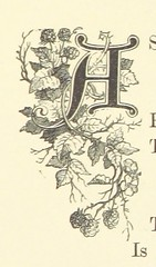 Image taken from page 153 of 'Woodland Wild: a selection of descriptive poetry. From various authors. With ... illustrations on steel and wood, after R. Bonheur, J. Bonheur, C. Jacque, Veyrassat, Yan Dargent, and other artists' (The British Library) Tags: typography small illuminated letter lettera publicdomain vol0 page153 bldigital mechanicalcurator pubplacelondon date1868 sysnum003971774 bonheurjuliette imagesfrombook003971774 imagesfromvolume0039717740