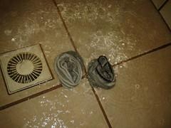 My girls socks (Tnisamante) Tags: girl socks shower bath