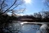 Van Cortlandt Lake (Eddie C3) Tags: newyorkcity winter nature bronx parks vancortlandtlake nycparks vancortlandtpark