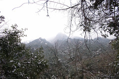 Mt_Huangshan1