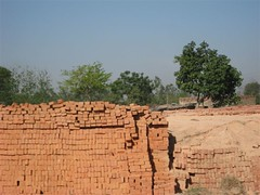 Musahar_Bricks