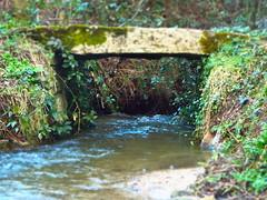 Cornish Stream (timecapturephoto) Tags: bridge water landscape photography photo cool interesting stream cornwall wildlife tripod iso awsome finepix fujifilm hdr cornish kernow s8200 vision:text=0593 vision:outdoor=0707
