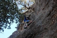 IMG_3243 (cityofroundrock) Tags: rock climbing round pard