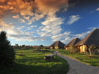 South Africa Hunting Safari - Eastern Cape 1