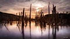 IMG_1737 (Karl P. Laulo) Tags: ice sunrise is fyr homborsund soloppgang