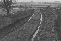 Trackbed at Threepenny Bit Curve looking towards Appenine way (Tanllan) Tags: railroad heritage train track railway tourist buzzard gauge narrow leighton lbr lbngr lblr