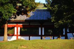 Wall Above Grass (pokoroto) Tags: above autumn grass japan wall october  nara kansai 2014 10 tdaiji    naraprefecture  kannazuki   themonthwhentherearenogods 26