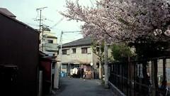 Osaka, 2016 (Pen and Vogue) Tags: spring osaka 2016
