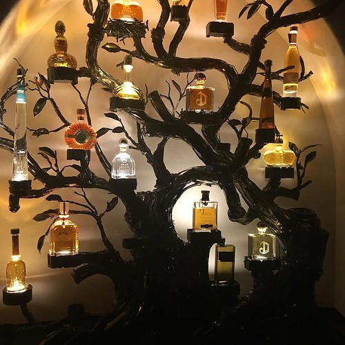 A tequila tree!! What could be better.