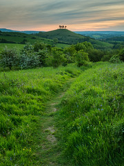 Towards Colmers Hill (Damian_Ward) Tags: photography dorset symondsbury colmershill damianward eypedown ©damianward